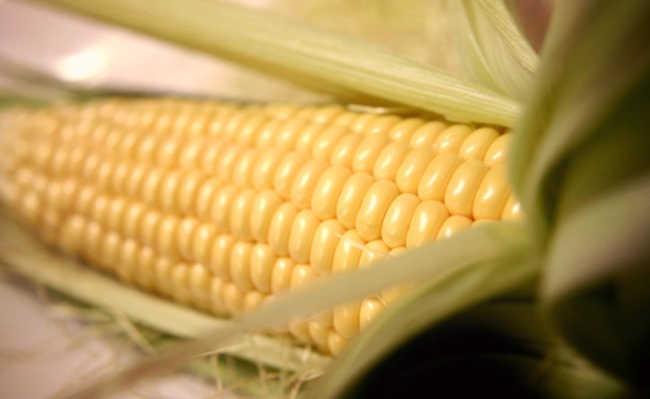 Alimentos que podem causar câncer