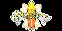 Hardcore surf shop